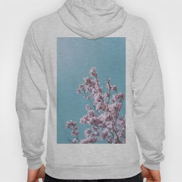 SPRING MAGNOLIA FLOWER TREE, pink on turquoise Hoody