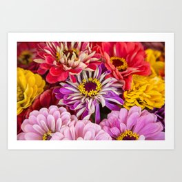 last of the summer colors Art Print