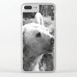 Syrian Brown Bear Portrait Clear iPhone Case