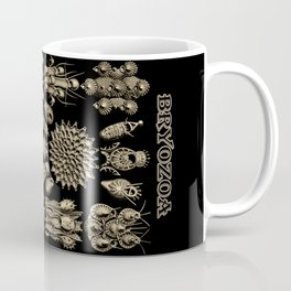 """""""Bryozoa"""" from """"Art Forms of Nature"""" by Ernst Haeckel Coffee Mug"""