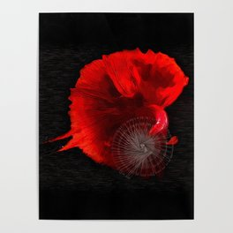 Diving in Red Poster