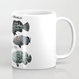 Groupers of the World Coffee Mug