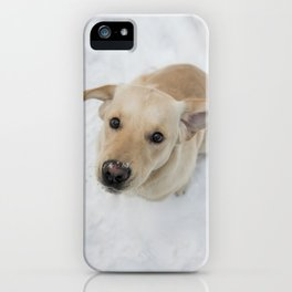 Labrador puppy in a snow iPhone Case