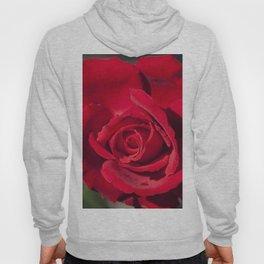 Blood rose Hoody
