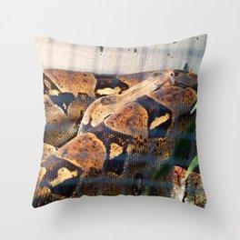 Sleeping Snake Throw Pillow