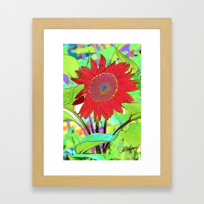 Sunflower Brillance Framed Art Print