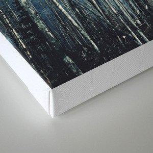 Grainy Trees Canvas Print