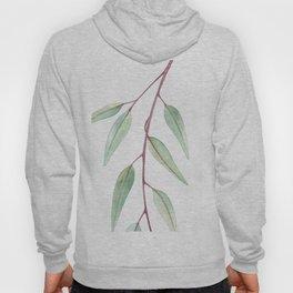 Eucalyptus Leaves Two Hoody