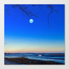 Cold Moon Canvas Print