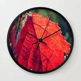 Red leaves Wall Clock