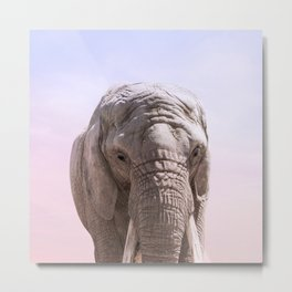 Elephant Photography and Sunset | Wildlife Art | African Metal Print