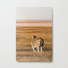 Zebra on an african plain Metal Print