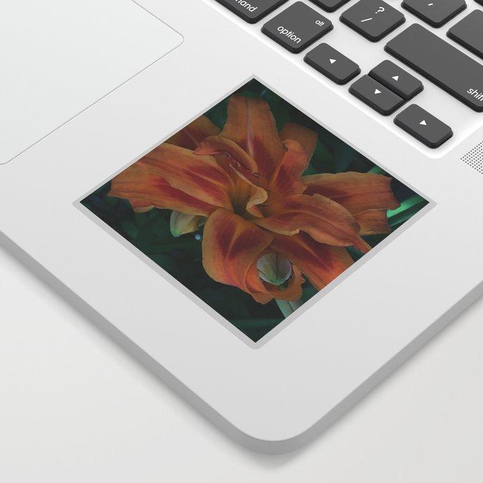 Botanical Florals Zencolor1 Sticker