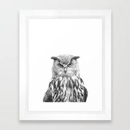 Black and white owl animal portrait Framed Art Print