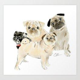 Pug Dogs Pugs Art Print