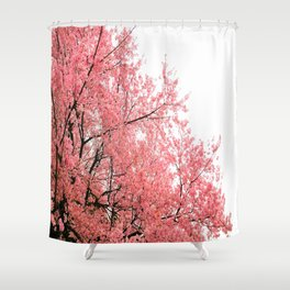 Coral Pink Flowers  Shower Curtain