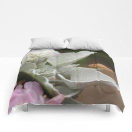 Snail Seeker Comforters