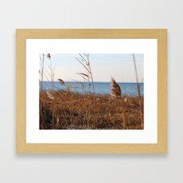 MD'Youville Framed Art Print