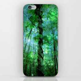 Forest Of The Fairies Green Blue iPhone Skin