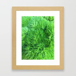 Dianthus Green Trick Framed Art Print