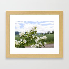 Flowers whit a view Framed Art Print