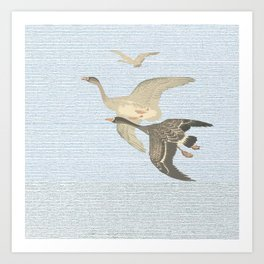 Nothing to match the flight of wild birds flying Art Print