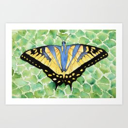 Nature's Jewel Art Print