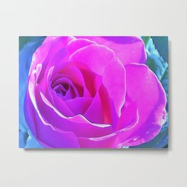 Pretty Round Pink and Purple Rose on Blue Painting Metal Print