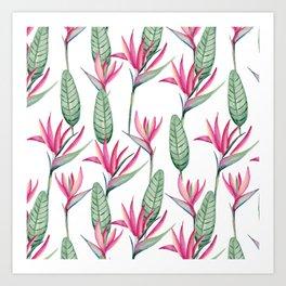 Pink strelitzia Art Print