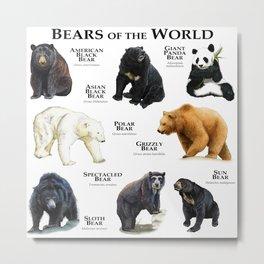 Bears of the World Metal Print