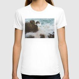 Pedregal, Mexico VIII T-shirt