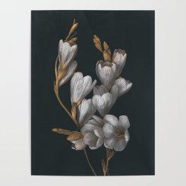 Night Flowers Poster