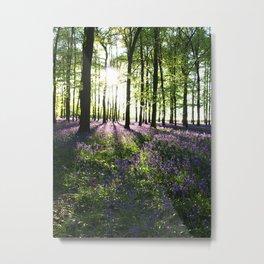 Bluebells at Sunrise Metal Print