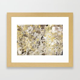 Lichen on The Rollright Stones Framed Art Print