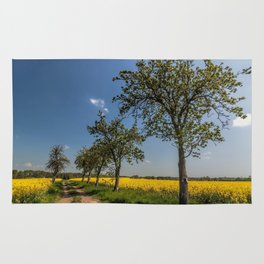 Spring landscape- a trail in the rapeseed Rug