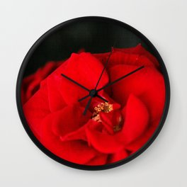 Red Rose Flower Close up Wall Clock