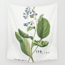 Plantae Selectae No 42-Pulmonaria or Lungworts by Georg Dionysius Ehret Wall Tapestry
