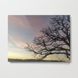 Subtle savanna sunset - Pheasant Branch Conservancy Metal Print