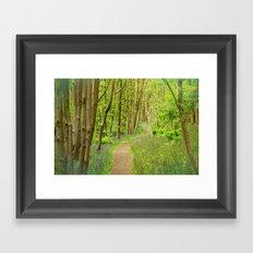 FOREST PEACE Framed Art Print