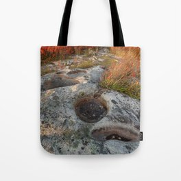 Autumn Huckleberry Fossil Tote Bag
