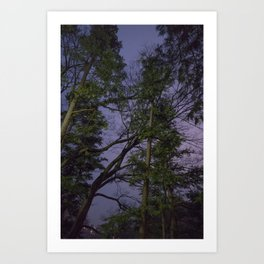 ANTI-SAKURA Art Print