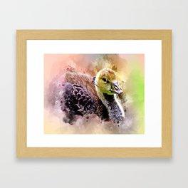 Cute Gosling Framed Art Print