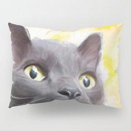 Cole the Cat Pillow Sham