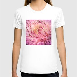 PINK THISTLE BLOOM T-shirt