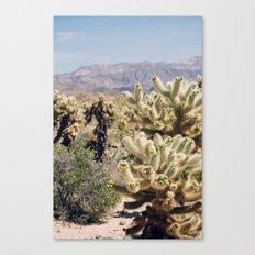 Joshua Tree Cactus Garden Canvas Print