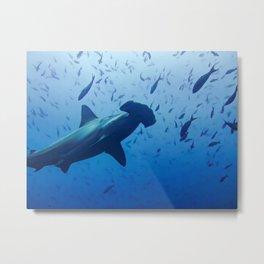 Hammerhead shark portrait Metal Print