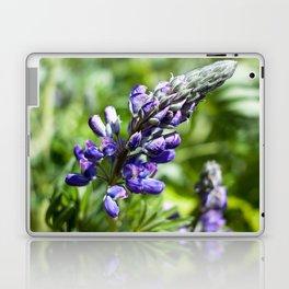 Spring Lupine Photography Print Laptop & iPad Skin