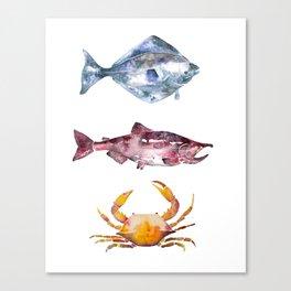 Alaska Marine Life Canvas Print