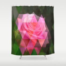 Pink Roses in Anzures 4 Art Triangles 1 Shower Curtain