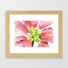 Poinsettia Flower Watercolor Framed Art Print
